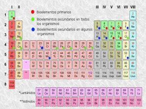 Caractersticas de los bioelementos clasificacin y caractersticas caracteristicas bioelementos urtaz Image collections
