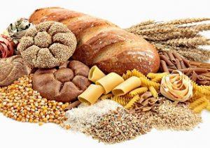 caracteristicas de los glucidos