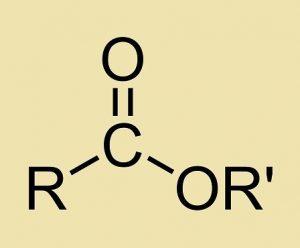 caracteristicas de los ésteres