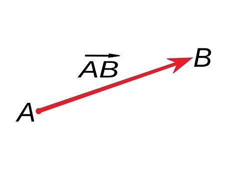 caracteristicas de los vectores