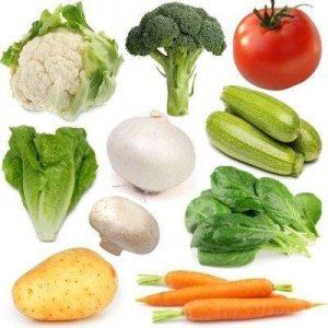 caracteristicas de los vegetales
