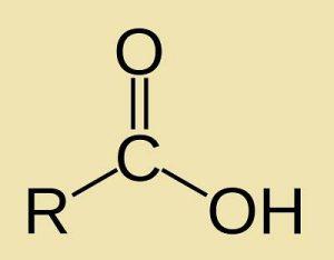 caracteristicas de los acidos carboxilicos