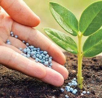 caracteristicas de los fertilizantes