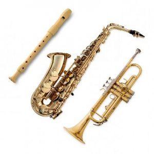 caracteristicas de los instrumentos de viento