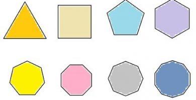 caracteristicas de los poligonos