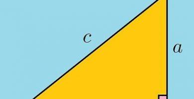 caracteristicas del triangulo rectangulo