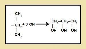 formacion de un glicerol
