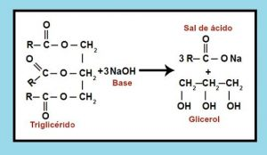 formacion del glicerol