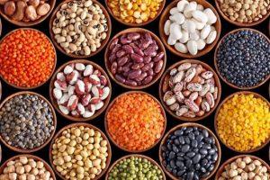 caracteristicas de las leguminosas