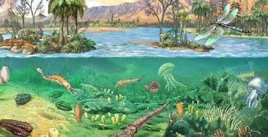 caracteristicas de la era paleozoica