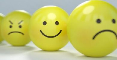 caracteristicas de la funcion emotiva