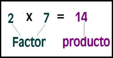 caracteristicas de la multiplicacion