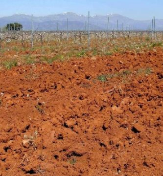 caracteristicas del suelo arcilloso