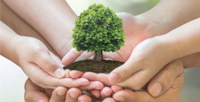 caracteristicas de la politica ambiental
