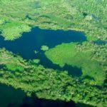 caracteristicas del sistema acuifero guarani